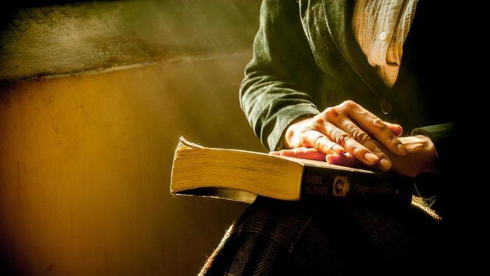 Nuova Zelanda, dietro il mistero dei libri scomparsi c'era un gruppo di senzatetto